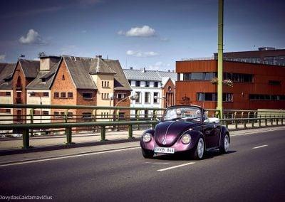 Violetinis kabrioletas - vabalas - Nuotrauka: Dovydas Gaidamavicius